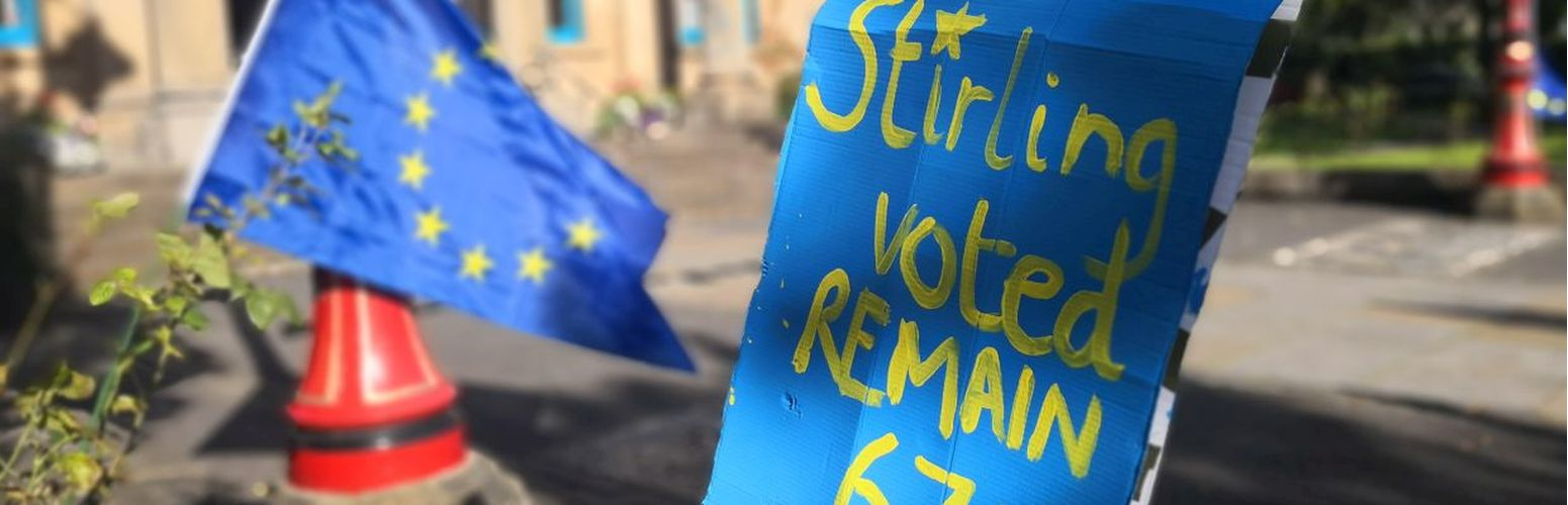 Stirling Voted Remain